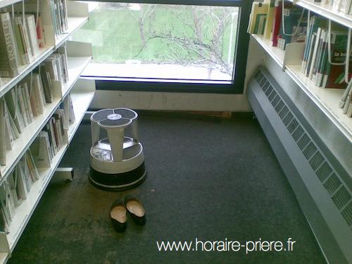 Entre les rayons d'une bibliothèque universitaire, Ile-de-France, Franc