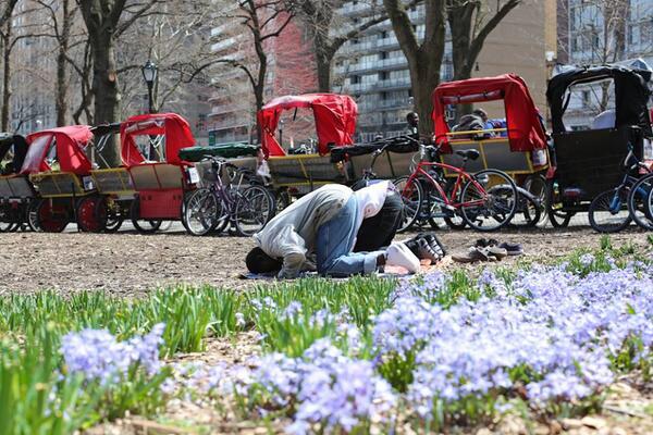 A Central park, New York