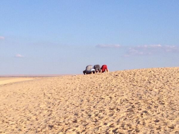 Dans les environs de Nefta, en Tunisie