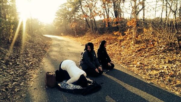 Sur la route, au milieu d'une fôret