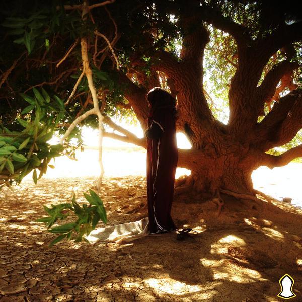 Prière sous l'arbre béni, en Jordanie