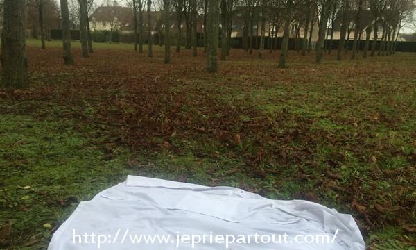 Dans un parc, à Poissy