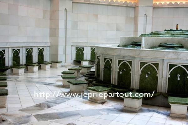A la mosquée Bin Zayed d'Abu Dhabi